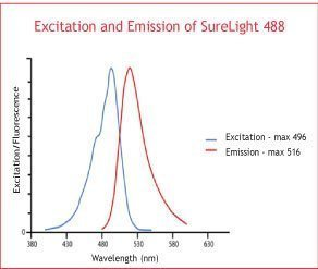 SureLight 488 NHS ester, 1mg