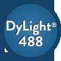 Streptavidin: DyLight® 488, 1mg